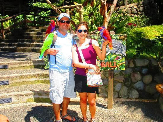 Bali-bird-park-ubud