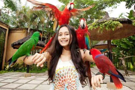 Bali Bird-park