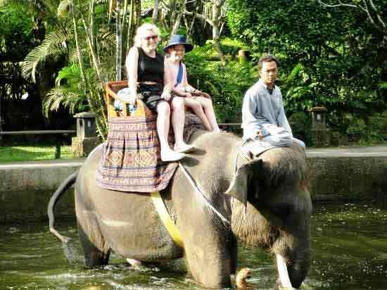 Ride-elephants-in-bali