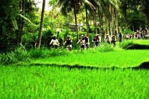 village-cyling-tour-ubud